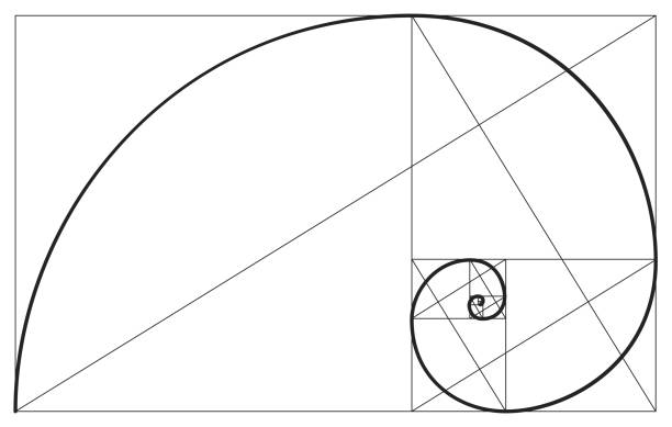 Best Fibonacci Spiral Illustrations, Royalty.