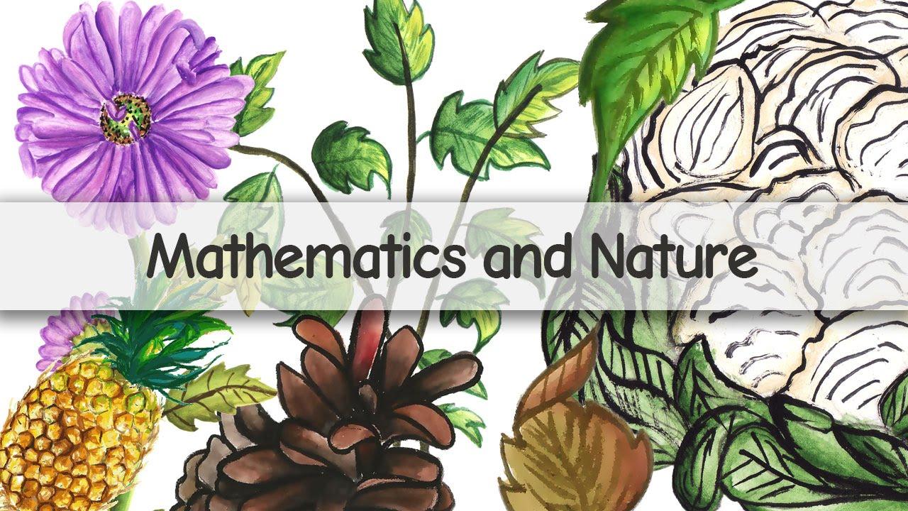 Mathematics and Nature.