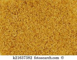 Dietary fibre Clip Art EPS Images. 17 dietary fibre clipart vector.