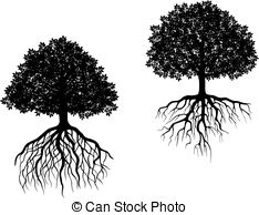 Fibrous root Clip Art and Stock Illustrations. 10 Fibrous root EPS.