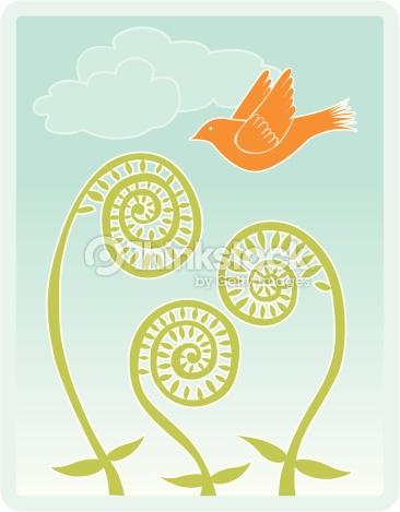 Fiddlehead Ferns With Bird And Clouds Vector Art.