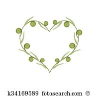 Fiddlehead fern Clipart and Illustration. 10 fiddlehead fern clip.