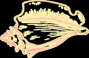 conch shell clip art.