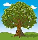 Peepal tree clipart.