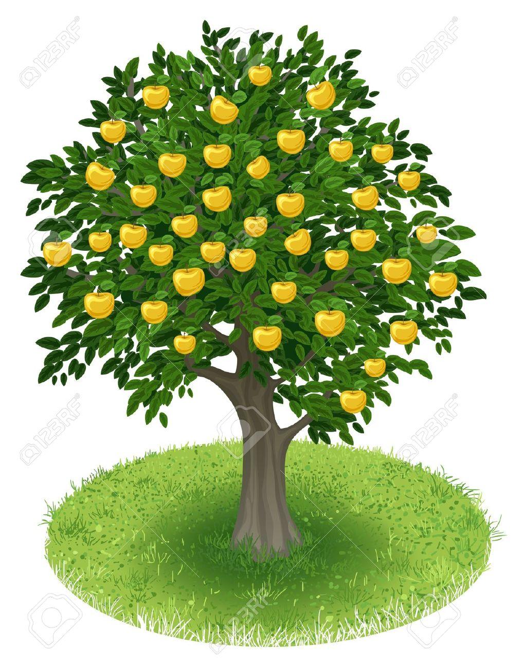 Apple tree in a field clipart.