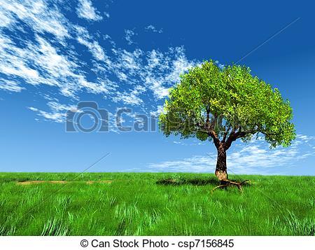 Stock Illustrations of Tree in grassy field csp7156845.