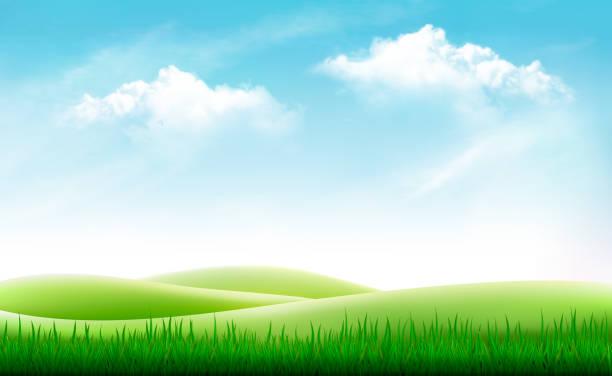 Best Grass Field Illustrations, Royalty.