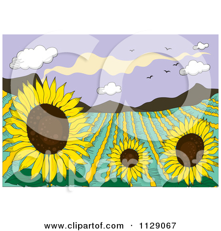 Cartoon Of A Mountainous Sunflower Field Crop.