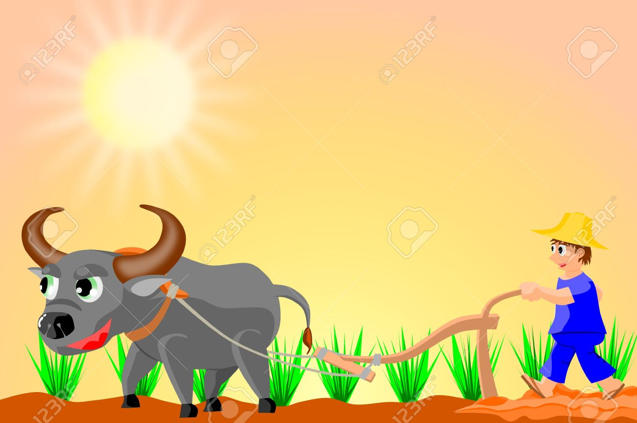 Farmer Planting Rice Royalty Free Cliparts, Vectors, And Stock.