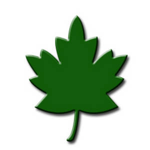 Clipart Picture of a Green Maple Tree Leaf.