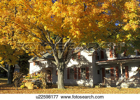 Picture of Peterborough, New Hampshire, NH, A fall display and.
