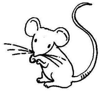 Field Mice Cartoon.