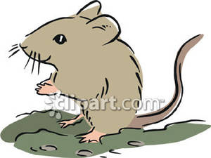 Free clipart mouse.