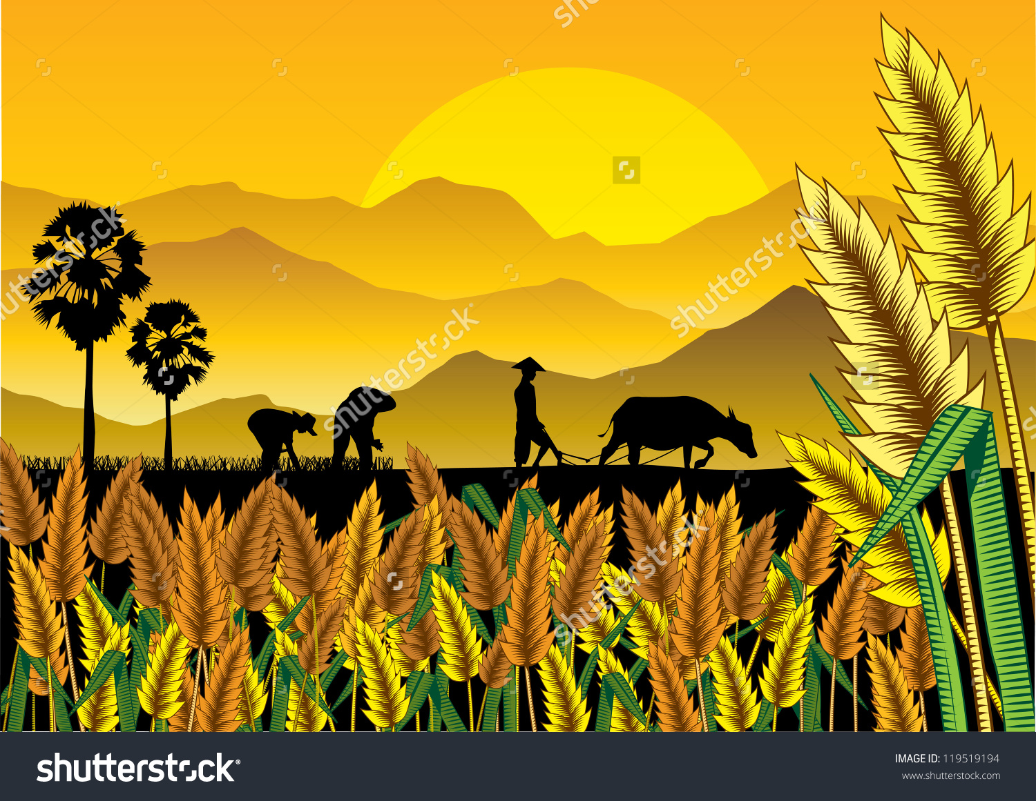 Rice fields clipart.