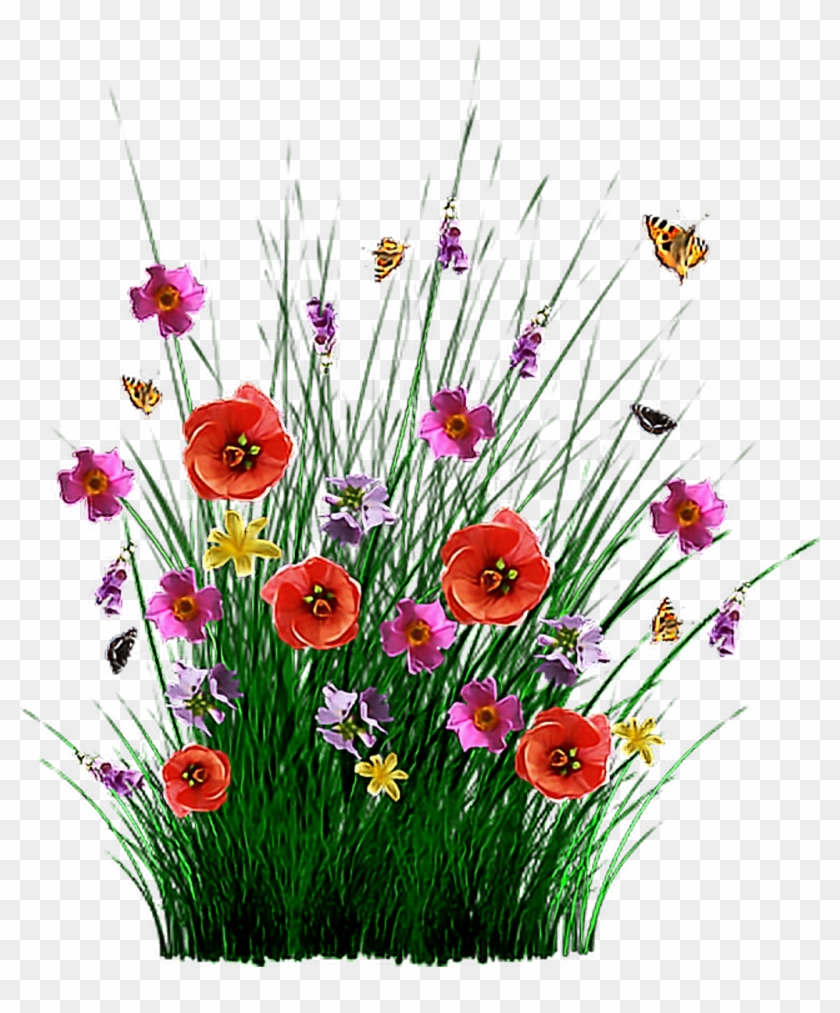 Field Of Flowers Png, Transparent Png.