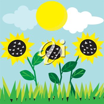 Clip Art Illustration of Sunflowers.