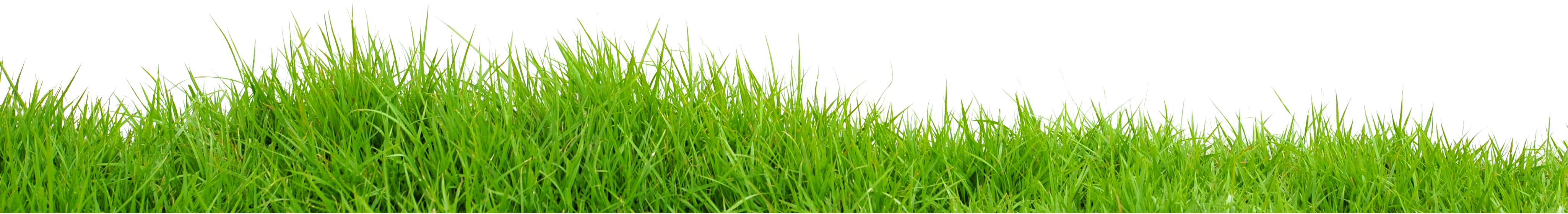 Field PNG Images Transparent Free Download.