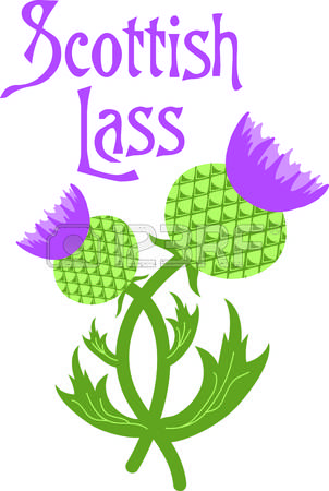 178 Scottish Thistle Stock Illustrations, Cliparts And Royalty.