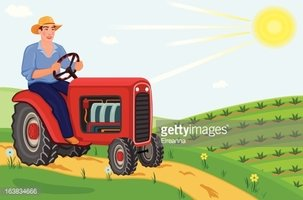 Farmer Driving Tractor on Fields stock vectors.
