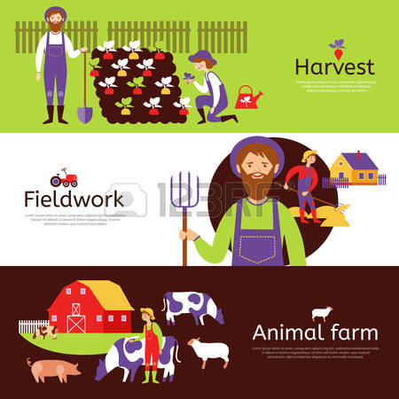 131 Fieldwork Stock Illustrations, Cliparts And Royalty Free.