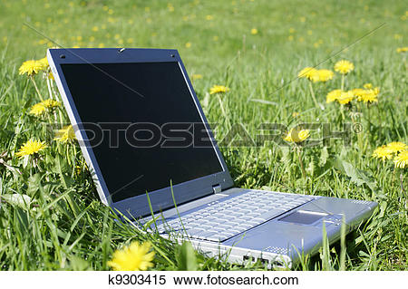 Stock Image of Fieldwork k9303415.