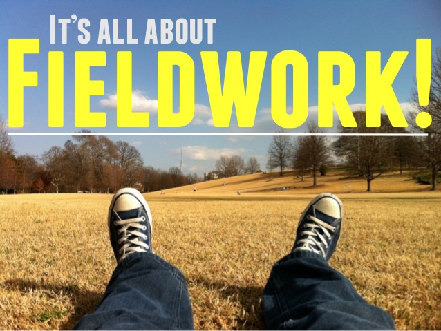 all about Fieldwork!.