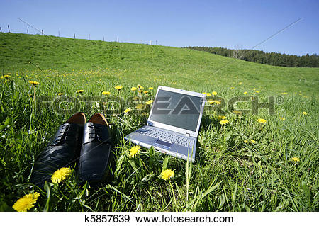 Stock Photograph of Fieldwork k5857639.
