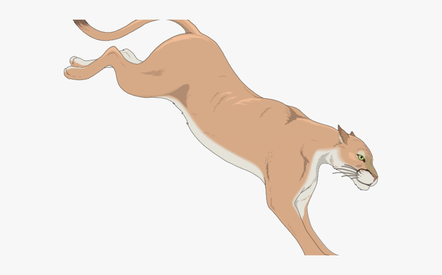 Transparent Fierce Lion Clipart.