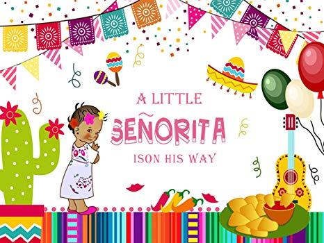 KSZUT 7x5ft Mexican Fiesta Baby Shower Backdrop Little Senorita Photography  Background Vinyl Mexico Fiesta Girl's Baby Shower Party Banner Studio.