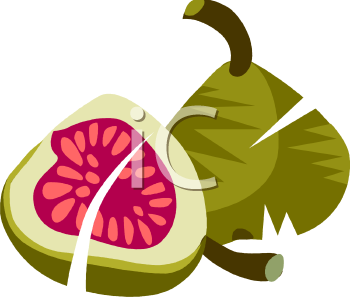 Fig 20clipart.