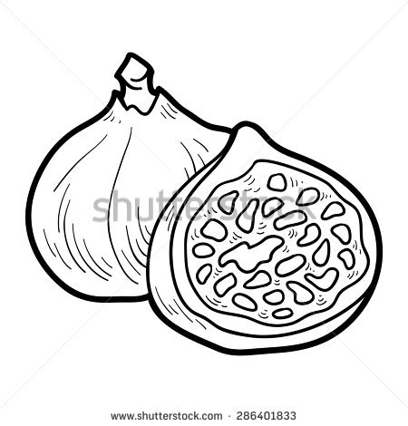 Fig clipart black and white 3 » Clipart Station.