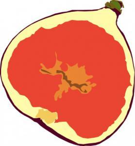 Fig Fruit Clip Art Download.