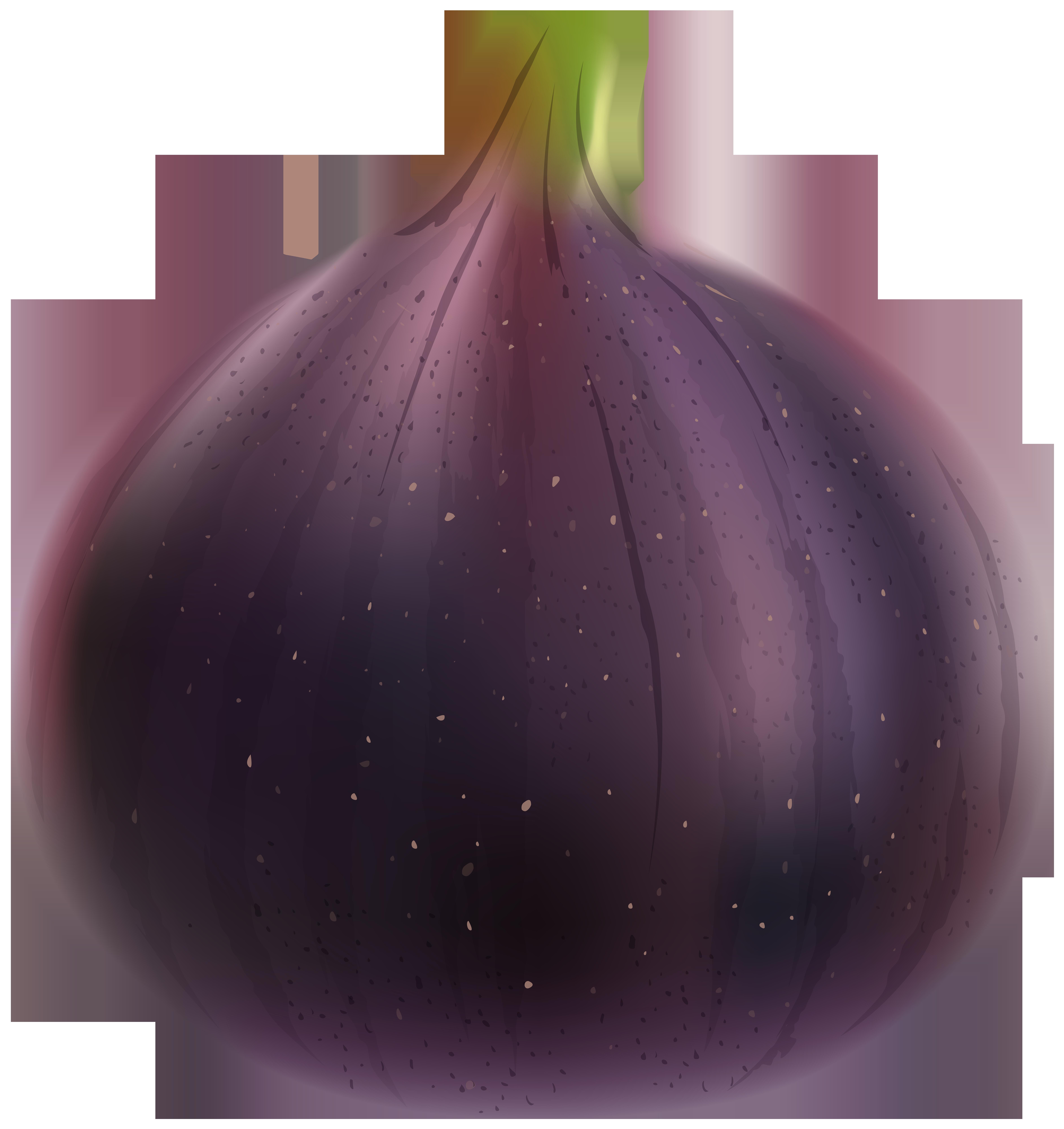 Fig PNG Clip Art Image.
