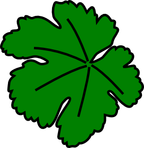 Fig leaf clipart.