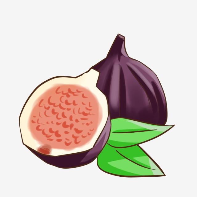 Fig Leaf PNG Images.