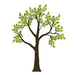 Vector Clip Art of Green Vector Tree. Nature Symbol csp8388841.