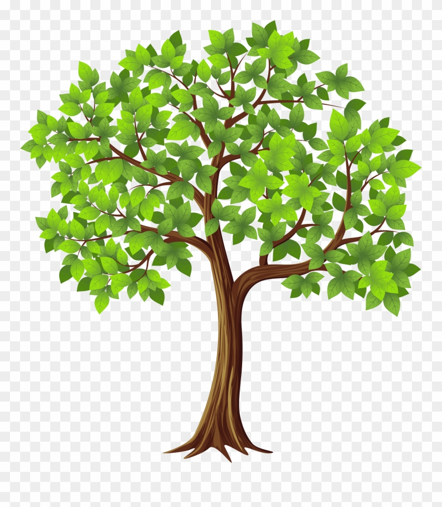Transparent Tree Cliparts Free Download Clip Art.