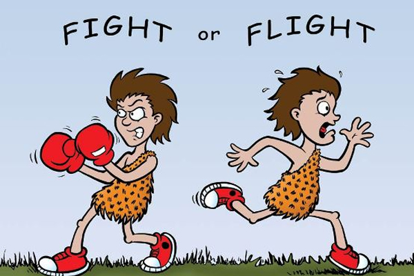 Fight or flight clipart 5 » Clipart Station.