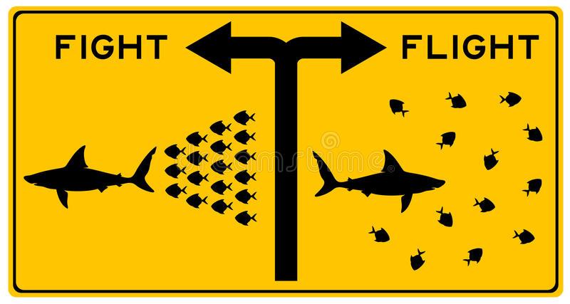 Fight Flight Freeze Stock Illustrations.