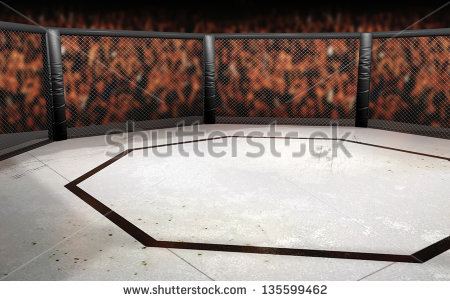Cage Fighting Stock Photos, Royalty.