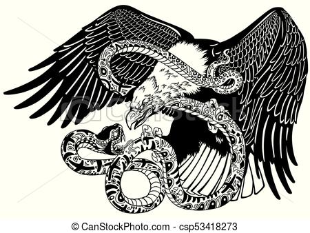 eagle fighting a snake. Black and white.