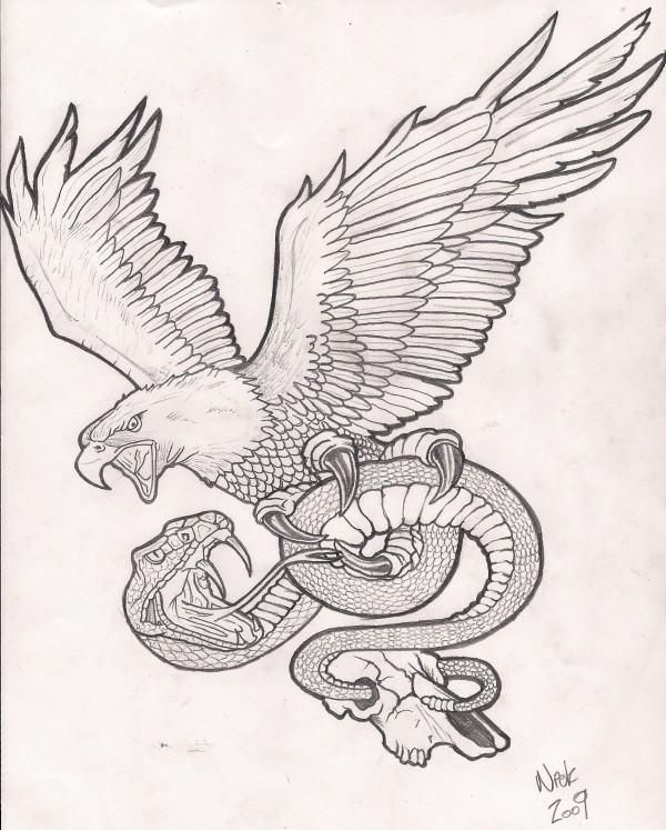 Image result for snake and eagle fighting.
