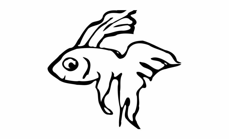 Betta Clipart Beta Fish.