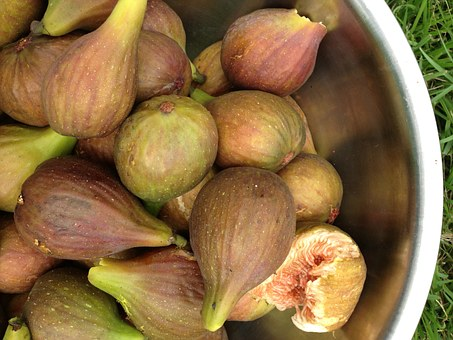 Fig, Fruit.