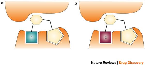 Figure 7 : Fragment.