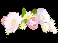 Ornamentos Blancos Png Vector, Clipart, PSD.