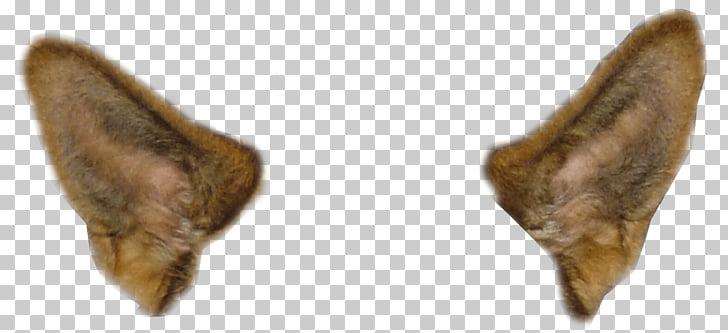 Dos orejas de animal, orejas de perro de filtro de Snapchat.
