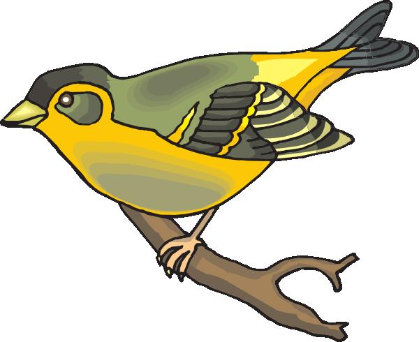 Finch 20clipart.