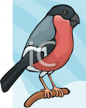 Clipart Image of a Finch.