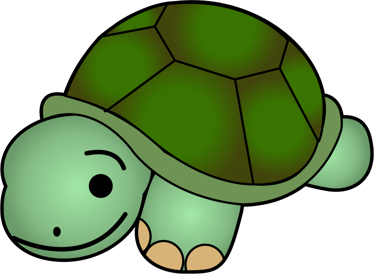 Turtle animal clipart #9
